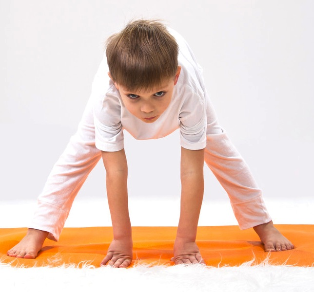 Formación Archivos - Yoga Terapeutico