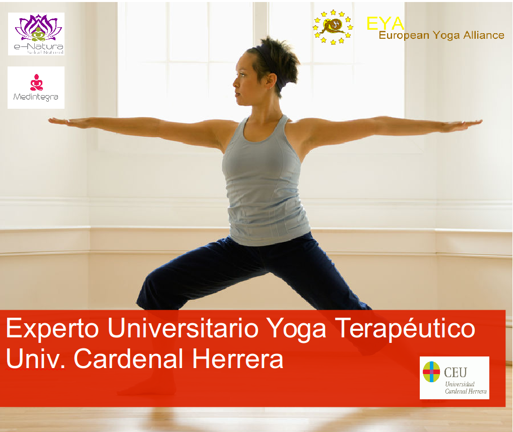 Formación internacional Yoga terapéutico - Yoga Terapeutico