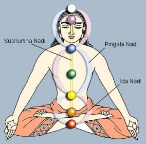 nadis-yoga