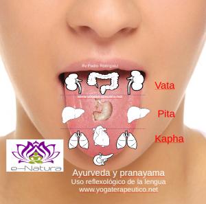 lenguay pranayama