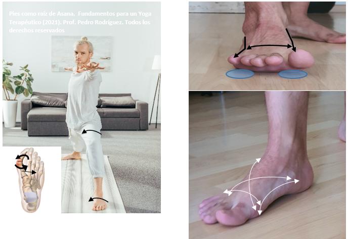 capitulo del libro Yoga terapéutico pies
